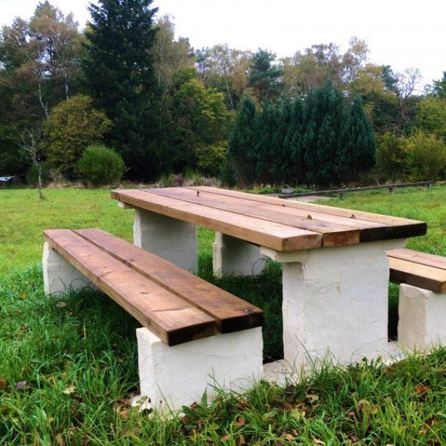 Betonnen picnictafel met douglas hout